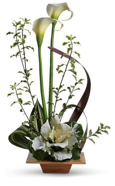 Grand Gesture - By Lehrer's Flowers - The calla lily symbolizes magnificent beauty and when mixed with graceful tropical leaves and arranged in a stunning bamboo dish, the results are extraordinary. White calla lilies, kale and tropical greens are delivered in a natural bamboo dish. Makes a grand gift!