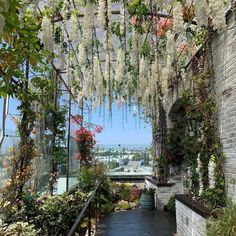 Image shared by polerr. Find images and videos about kpop, aesthetic and nature on We Heart It - the app to get lost in what you love. Angelus, Nature Aesthetic, Interior Exterior, West Hollywood, Pretty Flowers, Aesthetic Pictures, Planting Flowers, Places To Go, Beautiful Places