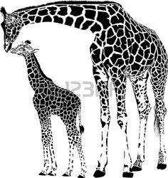 illustration vectorielle de la mère et jeune girafe photo