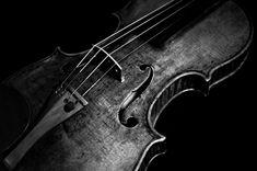 Violin.  Violas are better though... shh..