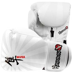 Hayabusa Ikusa 10oz Boxing Gloves In White
