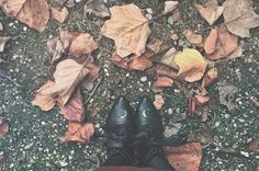 Bonjour ! I changed my bio, if you want to follow me with another social media ( FB, Twitter, Snapchat .. ) - Have a very nice Monday all 🍁 #photography #autumn #fall #autumnleaves #leaves #colors #dollskill #moon #shoes #witch