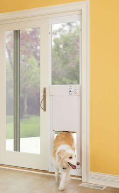 The Automatic Electronic Pet Door. When a pet wearing the included ultrasonic collar comes within 1' to 10' (the distance is selected by owner) the pet door automatically opens to let the pet in or out. When the pet passes through the door, it closes automatically