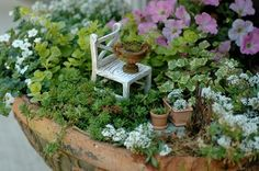 miniatures for fairy gardens | Miniature and Fairy Gardens / Sitting pretty in the garden