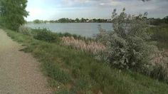 Ketner Lake....The summer of 2012 Sigg, attemped to abduct a woman who was jogging on the path.
