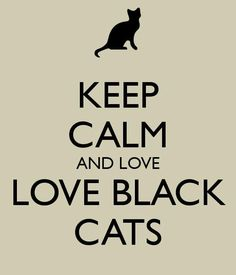Black cats get a bad rap, but these gorgeous kitties bring lots of love to the people who accept them into their hearts!