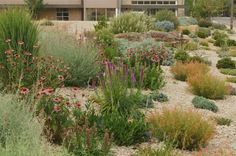 Praising Our Public Gardens: A Video Tribute to Idaho Botanical Garden by Evelyn Hadden http://gardenrant.com/2014/06/video-tribute-to-waterwise-landscape-at-idaho-botanical-garden.html?utm_source=rss&utm_medium=rss&utm_campaign=video-tribute-to-waterwise-landscape-at-idaho-botanical-garden  Young House Love  http://idealshedplans.com/storage-shed/