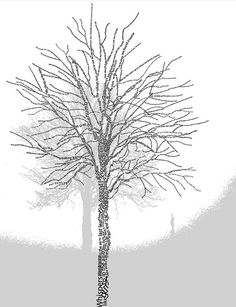 typography tree by Alison Wotton, via Flickr