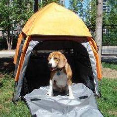 Umbra Tent Pet House - Size: Large (35.38 H)