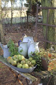 Outdoor vignette of vintage white pitchers and green apples in a galvanized container