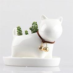 Little Dog White Ceramic Succulent Plant Flower Pot Flowe... https://smile.amazon.com/dp/B01GJCEID2/ref=cm_sw_r_pi_dp_x_L5T.xb00T8PEB