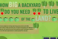 Infographic: How Much Backyard Is Needed To Feed A Family of Four?