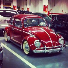 My volkswagen, my love!