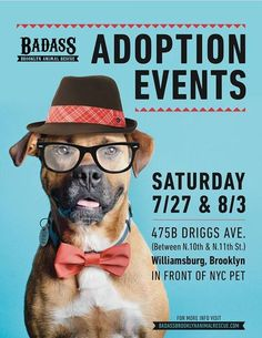 Badass Brooklyn Animal Rescue has big adoption events the next two Saturdays (7/27 and 8/3) at NYC Pet in Williamsburg, Brooklyn on Driggs Ave., from 11am - 2pm. Lots of amazing dogs looking for homes. Join us! www.badassbk.com