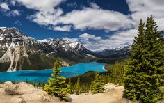 Peyto by Catalin Mitrache on 500px