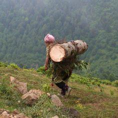 anadolu kadınının fedakarlığı - Google'da Ara