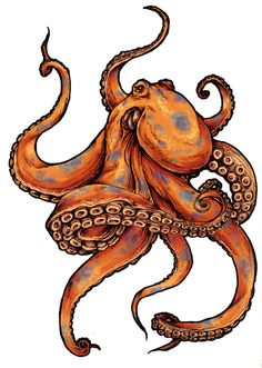 octopus tattoos designs and pictures | Octopus tattoo designs
