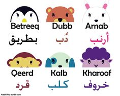 Animal Names in Arabic. How about in Moroccan Arabic? I know that bear, monkey, dog and sheep are same as these. But rabbit is Qnya قنية in Darija. Write Arabic, Learn Arabic Alphabet, Arabic Phrases, Arabic Words, Arabic Names, Learning Arabic, Kids Learning, Modern Standard Arabic, Moroccan Arabic