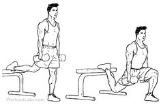 Bulgarian split squats is a gym work out exercise that targets quadriceps and also involves abs and calves and hamstrings. Build Muscle Fast, Gain Muscle, Best Muscle Gainer, Lower Back Exercises, Muscle Anatomy, Squat Workout, Workout Pictures, Workout Guide, Calisthenics