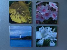 1 Magnet 2 x 2  Picture of Your Choice. In Stock. by JDLord, $4.75