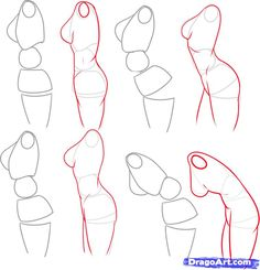 subtle movements of the female torso