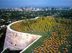 estupendo jardín de cactus en azotea Museo Getty Los Angeles