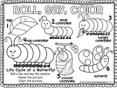 FREE Butterfly Gametivity: A roll, say, color dice game for the life cycle of a butterfly