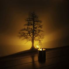 LED Lumens cast a dramatic show from a tiny stainless steel pine tree.