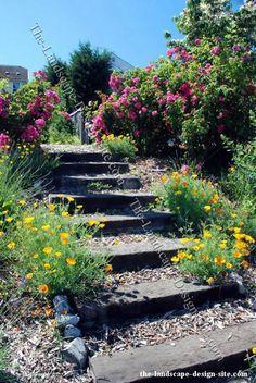 Backyard Landscaping For Hills   Railroad Tie Xeriscape Garden Stair Ideas