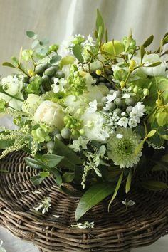 Green and White Flower arrangement Green Flowers, White Flowers, Beautiful Flowers, Table Flowers, Flower Vases, Beautiful Flower Arrangements, Floral Arrangements, Ikebana, Bouquet Champetre