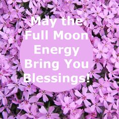 May's Honey Moon, a time for love. Wicca, Pagan, Full Moon Names, April Full, Pink Blood, Howl At The Moon, Blood Moon, Gems Jewelry, Spring Flowers