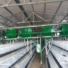 Automatic gantry feeding machine in Yinglian Machinery consists of frame, feeding box, feed sprocket, chain plate, electrical machine and so on. Automatic gantry feeding machine is an ideal choice for large-scale chicken farm Water Trough, Livestock, Scale, Chicken, Chain, Box, Drinking Fountain, Weighing Scale, Snare Drum