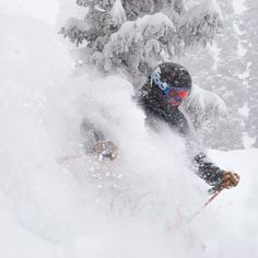 """Sweet Snowbird powder. It's been snowing 3"""" per hour since 10 a.m. The road is currently 4x4 only. photo: Matt Crawley"""