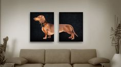LOVE THIS!!!  Dachshund portrait 2 poster 12x16 Dog Illustration by SparaFuori