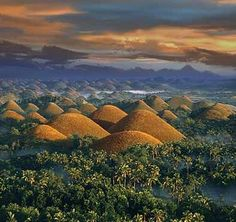 The Chocolate Hills of Bohol are a spectacular natural wonder in the Philippines. It consists of nearly 1800 small cute little hills that are spread over an area of 20 square miles.