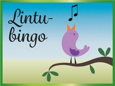 Lintubingo, Lintutietovisa ja Tipuhoroskooppi ryhmätoimintaan Outside Activities, Activities For Kids, Geography, Picture Video, Preschool, Birds, Science, Teaching, Education