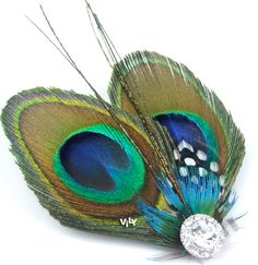 Peacock Feather Wedding Bridal....maybe the gem, or a pretty cluster of gems in a design, then one perfect peacock feather. don't cut the ends like these two are...and I need the birdcage veil with it :)