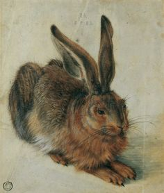 A Young Hare by Albrecht Dürer, (one of the first artists known to draw a self portrait paint in watercolor, and paint an animal all on its own.) - it is actually a full grown hare Bunny Art, Big Bunny, Rabbit Art, Wow Art, Arte Pop, Art For Art Sake, Animal Paintings, Art History, Amazing Art