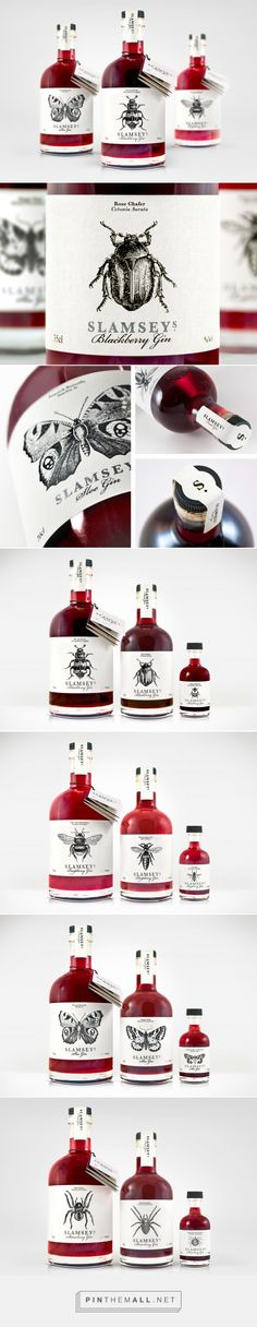 Slamseys fruit gins · B&B studio · gin package
