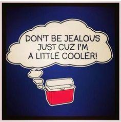 Lil cooler