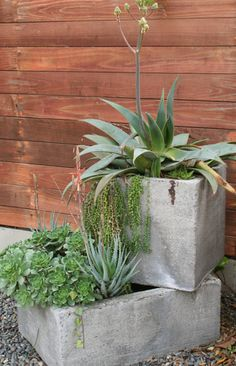 concrete square planters Great filled with succulents for a hot sunny area. Concrete Planters, Garden Planters, Concrete Blocks, Outdoor Projects, Garden Projects, Jardin Decor, Square Planters, Outdoor Gardens, Outdoor Patios