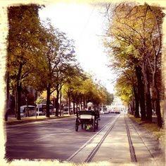Ringstrasse http://www.trace-ta-route.com/bienvenue-vienne-la-ville-des-palais-des-vignes/ #TraceTaRoute www.trace-ta-route.com