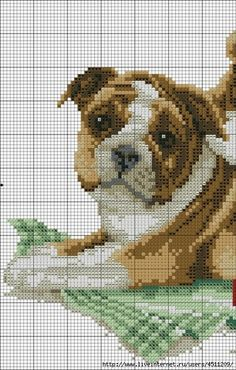 ru / Фото - - geminiana Two Bulldog ? Puppies on a Green Checkered Cloth Cross Stitch Pattern Cross Stitch Numbers, Cute Cross Stitch, Beaded Cross Stitch, Crochet Cross, Cross Stitch Animals, Cross Stitch Charts, Cross Stitch Designs, Cross Stitch Embroidery, Cross Stitch Patterns