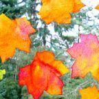 Manualidades de otoño: crea tus propias hojas