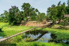 A photo essay and guide for Majuli island. Includes tips on responsible travel on Majuli, where to stay, and how to reach Majuli. Amazing Gifs, Incredible India, Northeast India, Responsible Travel, Photo Essay, Asia Travel, Garden Bridge, Wonders Of The World, River Island