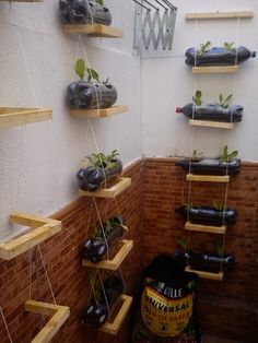 Un jardin vertical para reducir el estrés | Cuidar de tus plantas es facilisimo.com
