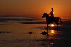 Oman | Sunset at Dhofar Beach. view on Fb https://www.facebook.com/OmanPocketGuide  credit: Ben Norvell #oman