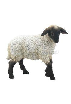 Baa, Baa Black Sheep HPL