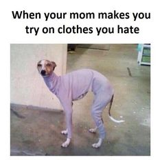 Clothes You Hate #Best-Memes-Of-All-Time, #Clothes, #Dirty-Funny-Memes, #Extremely-Funny-Memes, #Hate