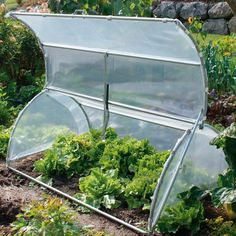 Build a cold frame for plants?